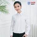 15新款女工装15620(白色正领)18601